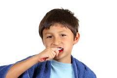 Young boy brushing teeth Stock Image