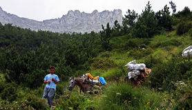 Young boy carrying garbage off the Mount Olympus with his horses Royalty Free Stock Image