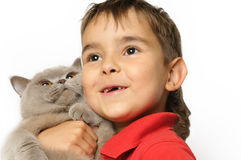 Young boy with cat Royalty Free Stock Photo
