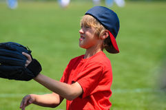 Young boy playing catch Royalty Free Stock Photography