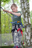 Young boy climbing Stock Photography