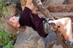Young Boy Climbing a tree Stock Images