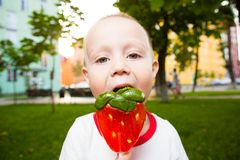 Young boy with colorful lollipop Royalty Free Stock Image