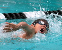 A young boy competes in freestyle swimming. A multi ethnic boy competes in freestyle swimming in an outdoor pool Royalty Free Stock Image