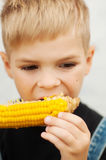Young boy with  corn on the cob in the backyard. A  boy happy ab Royalty Free Stock Photos