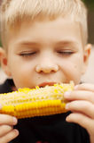 Young boy with  corn on the cob in the backyard. A  boy happy ab Royalty Free Stock Photography