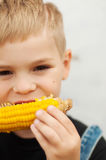 Young boy with  corn on the cob in the backyard. A  boy happy ab Royalty Free Stock Photo