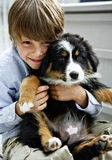 Young Boy with Cute Puppy. Happy young boy hugging a Bernese Mountain/Australian Shepherd puppy stock photo