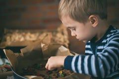 Boy decorate Christmas honey-cake Stock Photos