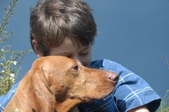 Young Boy With A Dog royalty free stock image
