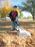 Young boy doing yard work Royalty Free Stock Photography