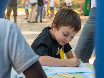 Young boy drawing on a paper with colored pencil in a park Royalty Free Stock Images