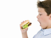 Young boy eating Stock Image