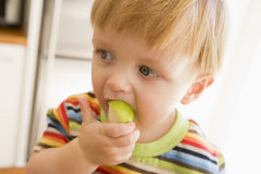 Young boy eating apple indoors Stock Images