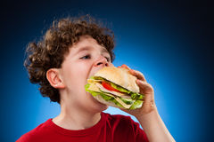 Young boy eating big sandwich. Young boy eating healthy sandwich on blue background Royalty Free Stock Photos