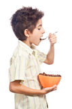 Young boy eating cereals Stock Images