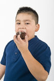 Young Boy Eating Cookie Royalty Free Stock Photos