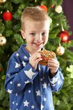 Young Boy Eating Cookie In Front Of Christmas Tree Royalty Free Stock Images