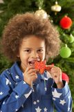 Young Boy Eating Cookie In Front Of Christmas Tree Stock Photos
