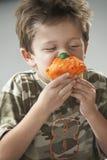 Young Boy Eating Cupcake Stock Photos