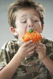 Young Boy Eating Cupcake Stock Image