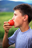 Young boy eating fresh tomato Royalty Free Stock Photo