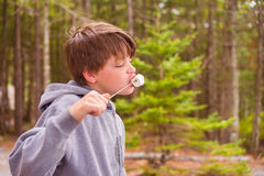 Young Boy Eating Marshmallow Stock Image