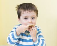 Young boy eating a pikelet Royalty Free Stock Images