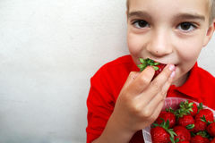 Young boy eating a ripe strawberry. Royalty Free Stock Images
