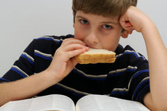 Young boy eating a sandwich Stock Photography