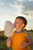 Young boy eating a stick of cotton candy Royalty Free Stock Image