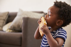 Young Boy Eating Toasted Sandwich At Home stock images