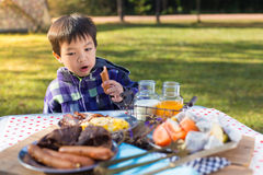 Young boy enjoying breakfast Royalty Free Stock Images