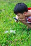 Young boy exploring nature with magnifying glass. Outdoors in th Royalty Free Stock Image