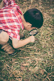 Young boy exploring nature with magnifying glass. Outdoors. Vint Royalty Free Stock Photos