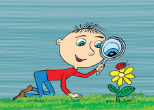Young boy exploring nature in a meadow with a magnifying glass l Stock Photos