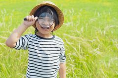 Young boy exploring nature in the meadow with a magnifying glass looking at flowers. Curious children in the woods. A future botanist. Young boy is looking at royalty free stock image