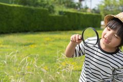 Young boy exploring nature in the meadow with a magnifying glass looking at flowers. Curious children in the woods, a future botan stock images