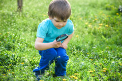 Young boy exploring nature in a meadow with magnifying glass royalty free stock photos