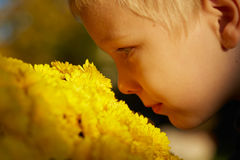 Young boy face from side, smelling yellow flowers outdoor Royalty Free Stock Photography
