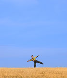 Young boy on field under blue sky Stock Photos