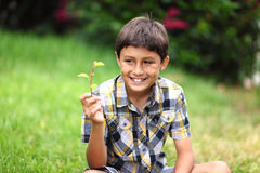 Young boy with flower Royalty Free Stock Photo