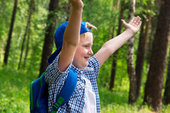 Young boy in forest Stock Photography