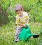 Young Boy In The Garden Stock Image