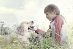 Young boy gently caresses his dog royalty free stock photo