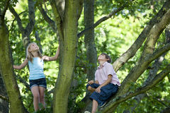A young boy and girl climbing a tree, looking up Royalty Free Stock Photography