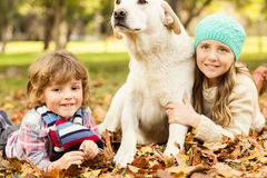 Young boy and girl lying with their dog in leaves Stock Photography
