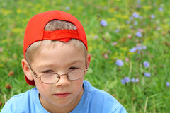 Young boy in glasses and flowers Royalty Free Stock Images