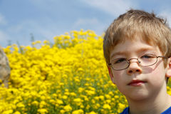Young boy in glasses and yellow flowers Royalty Free Stock Photos