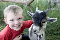 Young boy with goat. A young boy with a smile on his face, hugging his goat Stock Photography